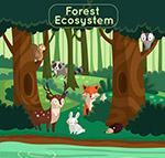 创意森林生态系统