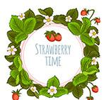 夏季草莓花叶