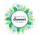 夏季热带花草框架