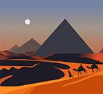 沙漠夜晚风景