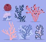 创意珊瑚设计