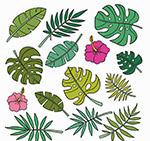 彩色花卉和树叶