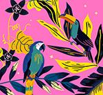 热带鹦鹉和大嘴鸟