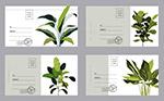 �G色植物明信片