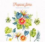 水彩绘热带花草