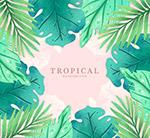 绿色热带树叶框架