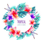 水彩绘热带花环