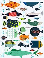 花纹海底鱼类