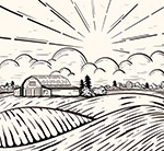 阳光下的农场风景