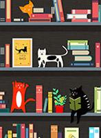 创意书架和猫咪