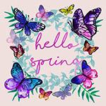 春季蝴蝶框架矢量