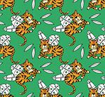 老虎和�淙~背景