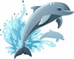 可爱海豚矢量