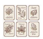 手绘秋季树叶卡片