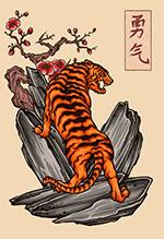 岩石上的老虎