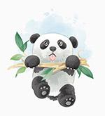 攀树枝的熊猫