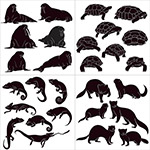 黑白风格动物