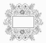 手绘无色花卉框架