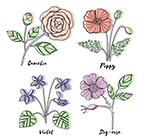 彩绘带名字花卉