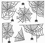 蜘蛛网和蜘蛛