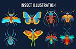 彩色昆虫设计
