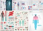人体信息分析图标