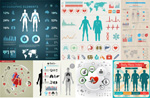 人体数据分析