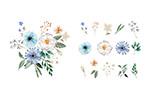 花朵和组合花束