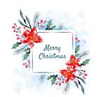 一品红圣诞贺卡
