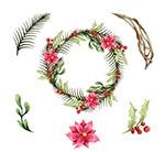 圣诞一品红花环