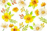 黄色花卉无缝背景