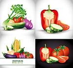 蔬菜主题矢量