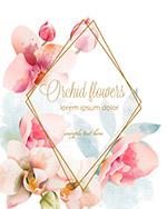 水彩兰花框架