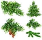 绿色树枝主题设计