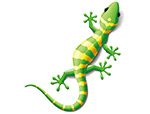 蜥蜴变色龙矢量