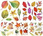 水彩创意秋天树叶