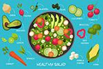 健康饮食食谱矢量