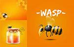 蜂蜜主题设计