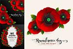 红色罂粟花朵边框
