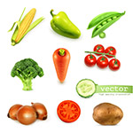 新鲜蔬菜矢量