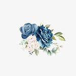 玫瑰花朵装饰元素