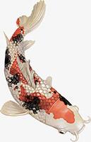 中国风彩绘锦鲤