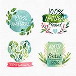 绿色天然彩绘标签