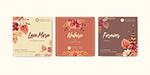 秋日植物营销广告