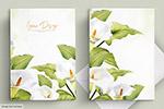 白色百合婚礼卡片