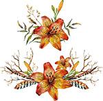 精美水彩花卉