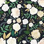 水彩白玫瑰花卉背景