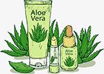 纯植物唇膏矢量