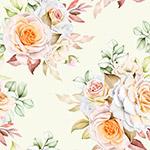 水彩月季花卉背景