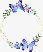 水彩手绘蝴蝶线框边框